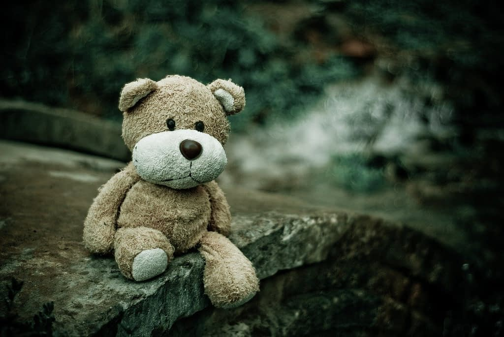 close-up, macro, teddy bear