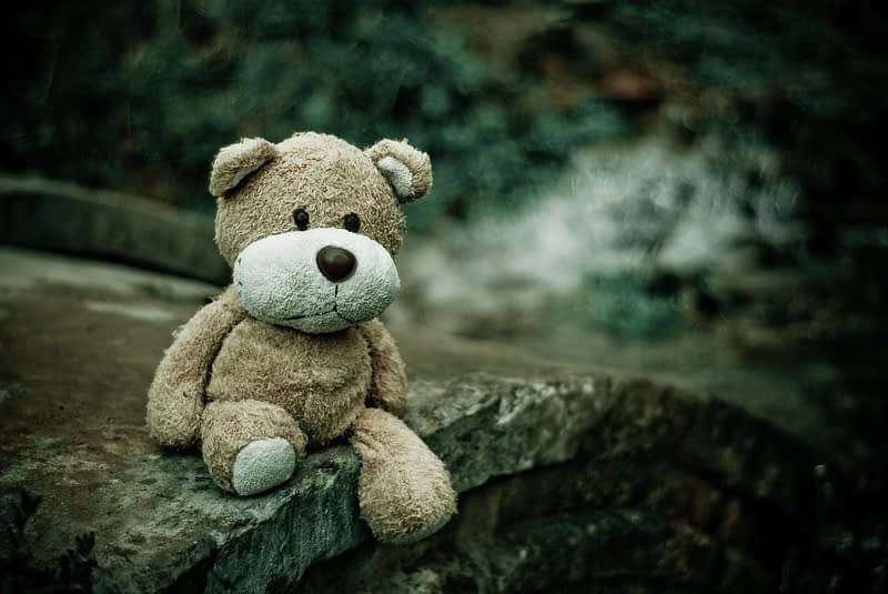 close-up, macro, teddy bear